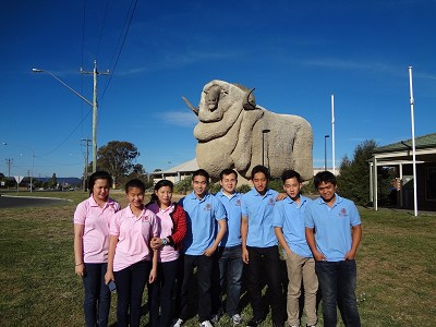 Big Merino Goulburn Convention 2012